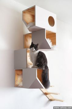 Catissa 4 storey cat house | Catissa | We create cool stuff for cats =)