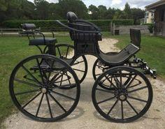Bennington Pair Presentation Horse Carriage Pleasure driving carriage  Sarasota, Florida