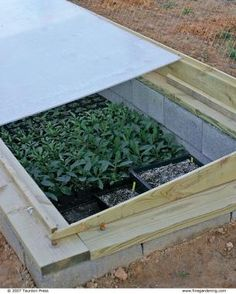 Garden Design: Potager 4 Ways to Use a Cold Frame: No matter what your climate, these plant shelters Fine Gardening, Container Gardening, Gardening Tips, Cold Frame Gardening, Winter Plants, Winter Garden, Vegetable Design, Vegetable Garden, Diy Plant Stand