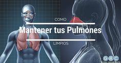 6 Consejos Para Mantener tus Pulmones Limpios