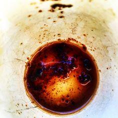 Autumn Coming Espresso