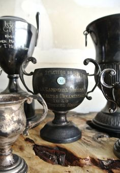 Stunning Collection Of Vintage Trophies  Set Of by ThEeRabbitHole