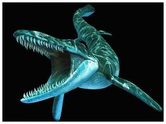 Tylosaurus Cretaceous ferocious deadliest sea creature - Top 101 - Top 101 ferocious prehistoric animals - All you need to know about everything - uneed2know.eu