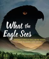A follow up to Turtle Island, What the Eagle Sees shares accounts of the people, places, and events that have mattered to Indigenous history after European contact. New Books, Books To Read, Indigenous Education, Chief Seattle, Broken Promises, Reading Levels, Eagles, Book Lovers, History