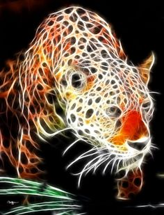 Fractal Leopard by RHuggs on deviantART