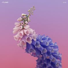 Flume - Skin on Limited Edition Colored 180g 2LP w/ Custom Artwork Inserts