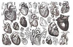 #tattoo #heart