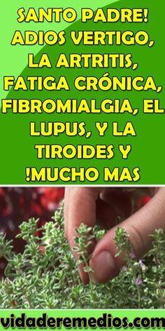 SANTO PADRE! ADIOS #VERTIGO, LA #ARTRITIS, #FATIGA #CRÓNICA, #FIBROMIALGIA, EL #LUPUS, Y LA #TIROIDES Y !MUCHO MAS Herbal Remedies, Home Remedies, Natural Remedies, Health And Wellness, Health Tips, Health Fitness, Herbal Medicine, Natural Medicine, Clara Berry
