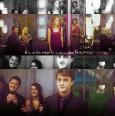 Harry and Hermione Potter