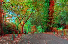 3D Images - Autumn in the park (10)