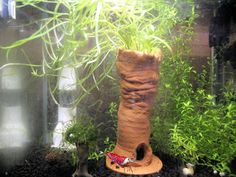 Garnelenturm - Knuddel Aquarium - Deko - Ton - Pflanze -