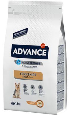 Advance Dog Yorkshire Adult Chicken & Rice Kg Yorkshire Terrier, Chicken Rice, Pet Shop, Portugal, Pet Store, Gatos, Food, Arroz Con Pollo, Teacup Yorkie