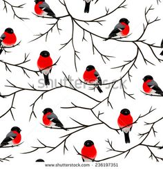 Bullfinches on the branches. Branch Vector, Bullfinch, Bird Pictures, Beautiful Birds, Xmas, Christmas, Quilling, Art Prints, Drawings