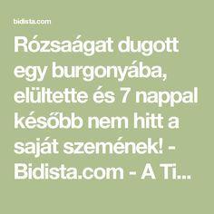 Rózsaágat dugott egy burgonyába, elültette és 7 nappal később nem hitt a saját szemének! - Bidista.com - A TippLista! Math Equations