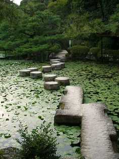 I stayed in a hotel once ... in order to get to our room you had to walk over a spot like this...I loved it then... and would like it at the barn.... no room.  Water lily stone path / Heian-ji Garden, Japan.