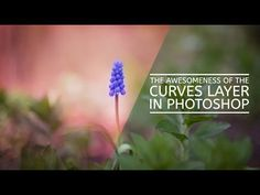 The Awesomeness of the Curves Layer in Photoshop - YouTube