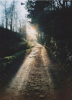 Nothing like a long backwoods dirt road. Beautiful World, Beautiful Places, Beautiful Pictures, Beautiful Scenery, Lovely Things, Wonderful Places, Back Road, Adventure Is Out There, More Pictures