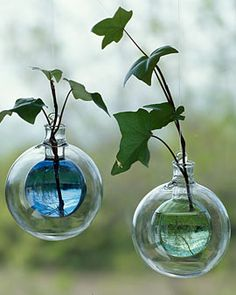 """Bubble Rooting Vase: Made of handblown glass, 4"""" diameter. 18"""" monofilament hanging cord included. Available in blue and green. $12.95."""