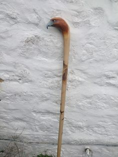 Hand Carved Walking Sticks, Decoy Carving, Dremel Carving, Duck Bird, Cane Stick, Baby Squirrel, Christmas Wood, Wood Sculpture, Hula