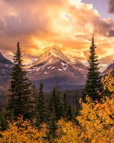 "americasgreatoutdoors: "" Fall has arrived at Glacier National Park, and it's stunning. Crushing clouds and rain greeted Nate Luebbe at Glacier, but as he crested Logan Pass he was treated to one of..."