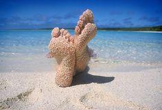 'South Pacific Beach' Canvas Print by Keith Molloy Beach Feet, Beach Bum, Summer Beach, Pink Summer, Pacific Beach, South Pacific, South Florida, Beach Pink, Photo Voyage