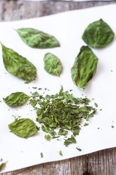 I'll show you exactly how to dry herbs in the microwave, it's quick, easy and a lot of fun! --- The microwave preserves color and flavor like no other method, and in minutes you can have months' worth of herbs ready to go. Drying Mint Leaves, Dried Basil Leaves, Herb Recipes, Cooking Recipes, Healthy Recipes, Fresh Basil Recipes, Preserving Basil, Cilantro, Dried Vegetables