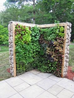 Herb & salad wall. A space-saving option for urban families or those with smaller yards.