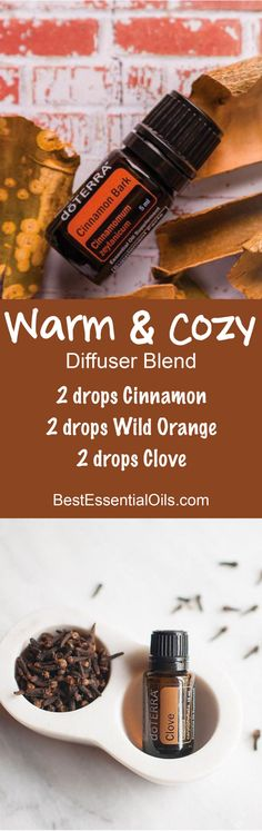 Warm & Cozy Essential Oils Diffuser Blend ••• Buy dōTERRA essential oils online at www.mydoterra.com/suzysholar, or contact me suzy.sholar@gmail.com for more info.