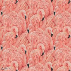 Retro Chic This Hip and Retro Chic Large Flamingo Wallpaper Can Add A Bit Of Cool To Many Rooms. Get Creative And Stand Out. A raised textured blown vinyl wall-covering featuring extravagant pink flam