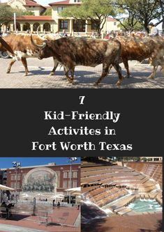 7 kid-friendly activities in Fort Worth