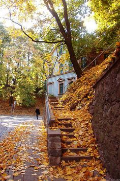 Autumn.  Tartu, Estonia.  October, 2005.  (Near the Mount? Good coffee in the Rotunda cafe!)