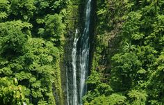 Papapapai Tai Fälle im Samoa Reiseführer http://www.abenteurer.net/2785-samoa-reisefuehrer/