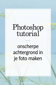 tutorial - watermerk over je foto's in Photoshop - Fotografille - Fotografie