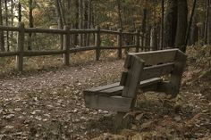 Find a Bench and relax... This one is at High Rollaways or Rollways, whichever!