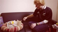 If Ed could trade places with one person, it would be a cat! Find out more about Ed Sheeran here