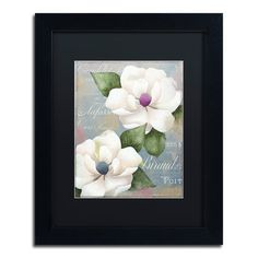 "Trademark Art 'Southern Charms' Framed Graphic Art Size: 14"" H x 11"" W x 0.5"" D, Mat Color: Black"