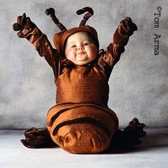 tom arma | Tom Arma's BabyBugs