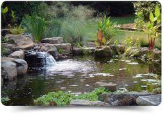 Image from http://splashscapespro.com/wp-content/uploads/2012/12/splash_pond_pic2.png.