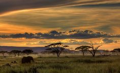 1x.com - Africa by Amnon Eichelberg