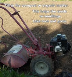 Secrets to a Successful Garden: Prepare the Soil
