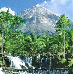 View from the Tabacon Hotel were I stayed in Costa Rica. 140 degree hot springs flowing from the volcano come right into the pool.