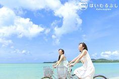 本日の八重山諸島の天候は晴れ、最高気温26度の予報です。 今日も小浜島をサイクリングで巡るのに最高の一日になりそうです。
