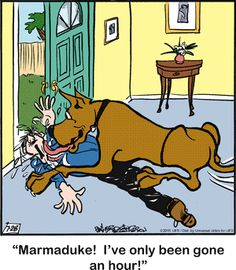 Marmaduke Comic Strip, July 28, 2015     on GoComics.com