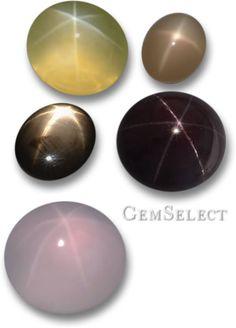 Aim for the stars! Star lemon quartz, star moonstone, star sapphire, star garnet and star rose quartz.