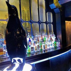 Omfg. This looks like the Iceberg Lounge Bar with a Penguin and Drinks. I cant wait for Season 4 on September 21