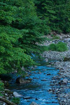 Shirakami-Sanchi #japan #aomori#World Heritage