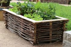 Planting raised beds in the year – plan for beginners with planting tips - Bepflanzung Garden Furniture, Outdoor Furniture, Outdoor Decor, Gardening For Beginners, Wisteria, Raised Beds, Grass, How To Plan, Wood