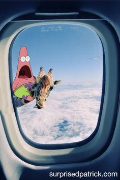 funny Black and White sky clouds Window giraffe Funny Animals, Cute Animals, Tier Fotos, Black And White Photography, Animal Kingdom, Funny Pictures, Creatures, Cats, Airplane Window