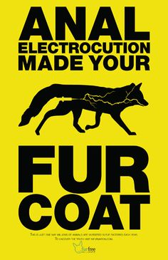 stop buying real fur you fucking idiots! (please excuse my french but for anyone to STILL buy real fur DESPITE all of the amazing synthetic CRUELTY-FREE fibers? this shit is RIDICULOUS) ++ ++ ++ ++ ++ ++ ++ ++ ++ ++ ++ ++ ++ ++ ++ ++ ++ ++ ++ ++ ++ ++ ++ ++