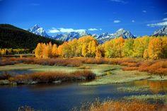 Ilparco nazionale di Yellowstone(Yellowstone National Park) si trova negliStati Unitie più precisamente nell'estremo settore nord-occidentale dello stato delWyominge sconfina, per un pi…